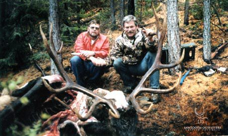 001_rocky-mountain-elk-guided-hunting-trips-in-british-columbia_march20elk