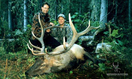 002_rocky-mountain-elk-guided-hunting-trips-in-british-columbia_march20elk