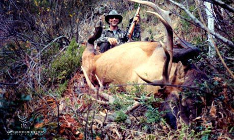 007_rocky-mountain-elk-guided-hunting-trips-in-british-columbia_march20elk