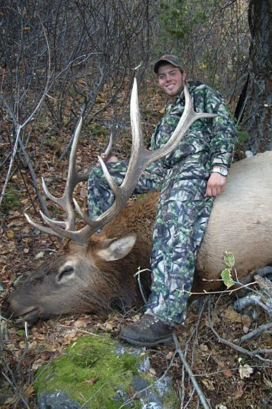 photo_187_rocky-mountain-elk-guided-hunting-trips-in-british-columbia_march20elk