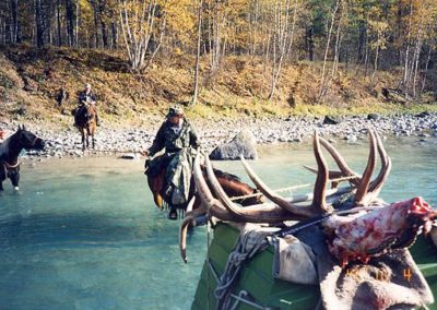 photo_222-rocky-mountain-elk-guided-hunting-trips-in-british-columbia_march20elk